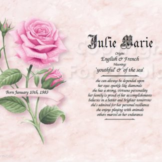 Pink Rose First Name Meaning Art