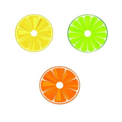 Citrus Fruit DVD Art