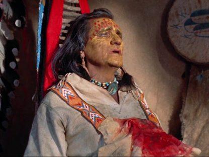 Chief Crazy Horse Screen Shot 3